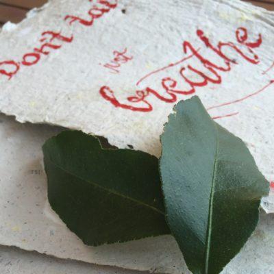 Papier schöpfen – einfach und schön