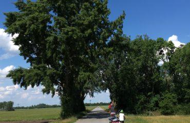 Radtour zu fünft :: Entschleunigung per pedales