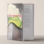 Mein neues Buch kommt :: Zeit für Wünsche
